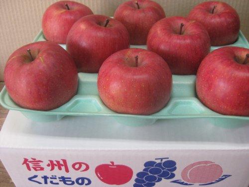 長野県産 生産農家直送りんご サンふじ 上級ランク(特秀) 贈答向き 5〜10玉 3kg箱