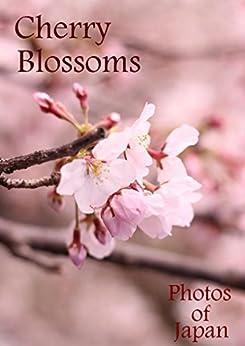 [木村 香]のCherry Blossoms Photos of Japan 目黒川の桜: 2016年 春の桜