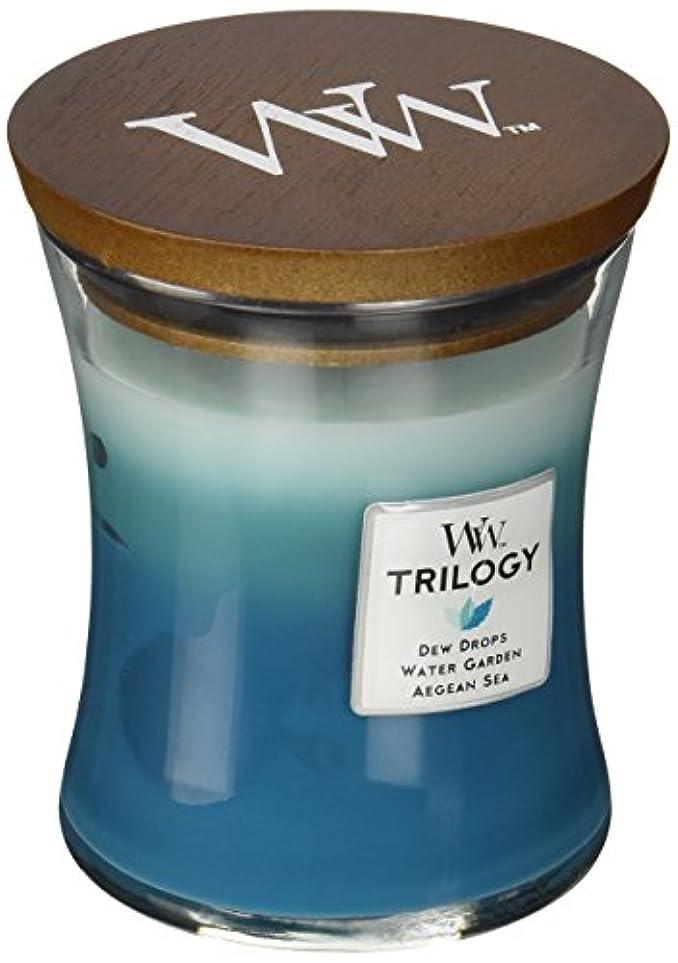切り下げ脚花瓶Wood Wick ウッドウィック トリロジージャーキャンドルMサイズ  ジェントルレイン