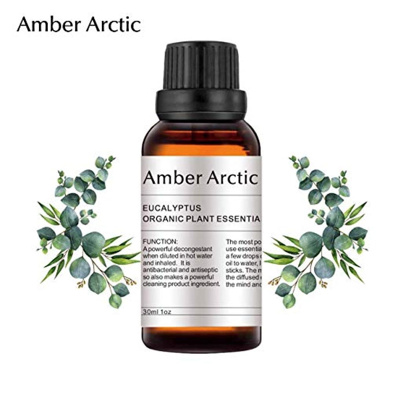 不明瞭ベックス休戦AMBER ARCTIC エッセンシャル オイル ディフューザー 用 100% 純粋 新鮮 有機 植物 セラピー オイル 30Ml ユーカリ ユーカリ