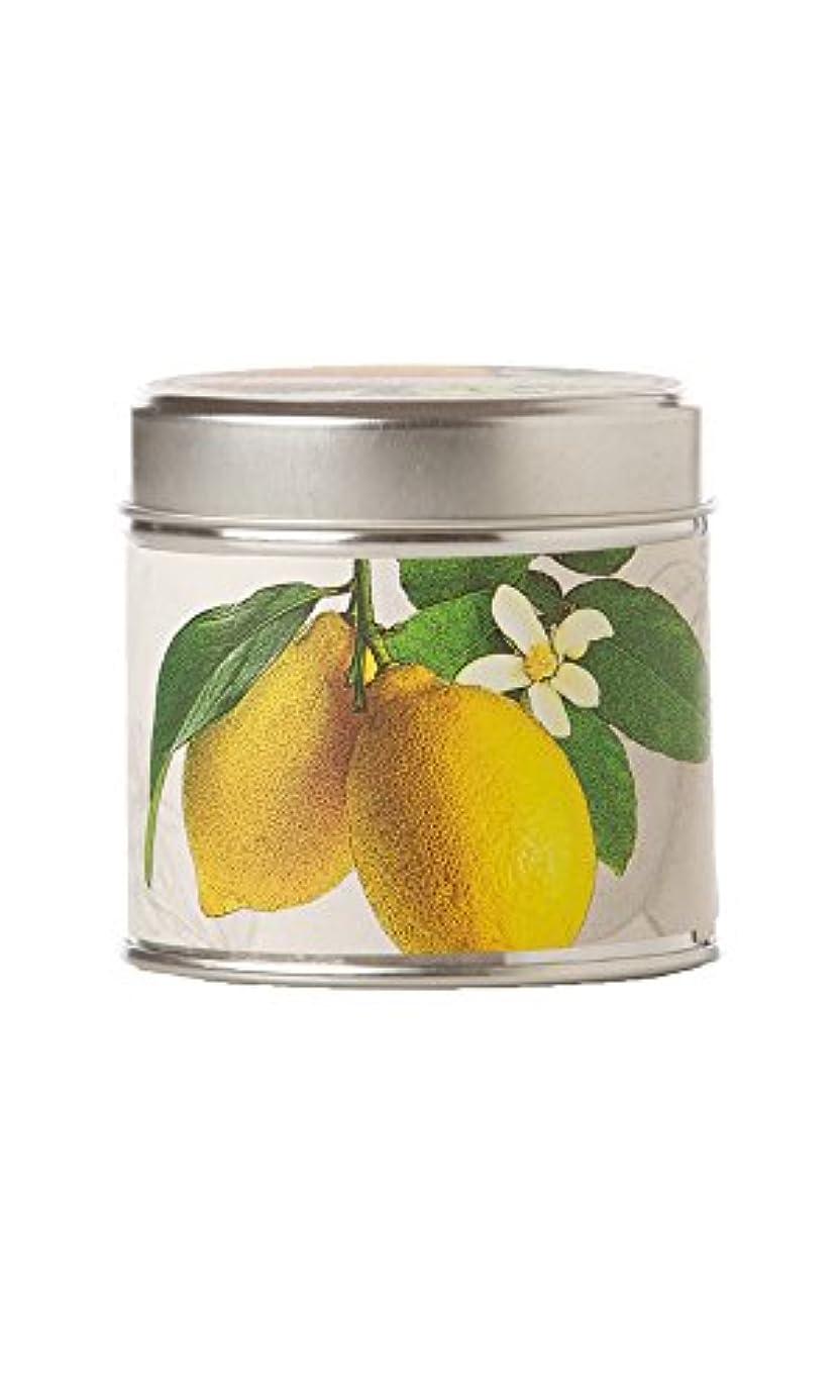 摂動冷蔵庫ティーンエイジャーロージーリングス ソイキャンドル レモンブロッサム&ライチ