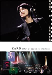 What a beautiful moment [DVD]