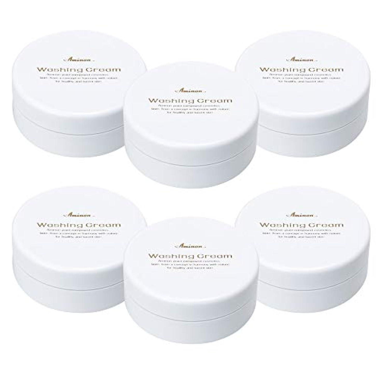 扱う第二にヒールアミノン 洗顔クリーム 90g (6個セット)