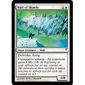 マジック:ザ・ギャザリング 【英語】 【コールドスナップ】欠片の壁/Wall of Shards