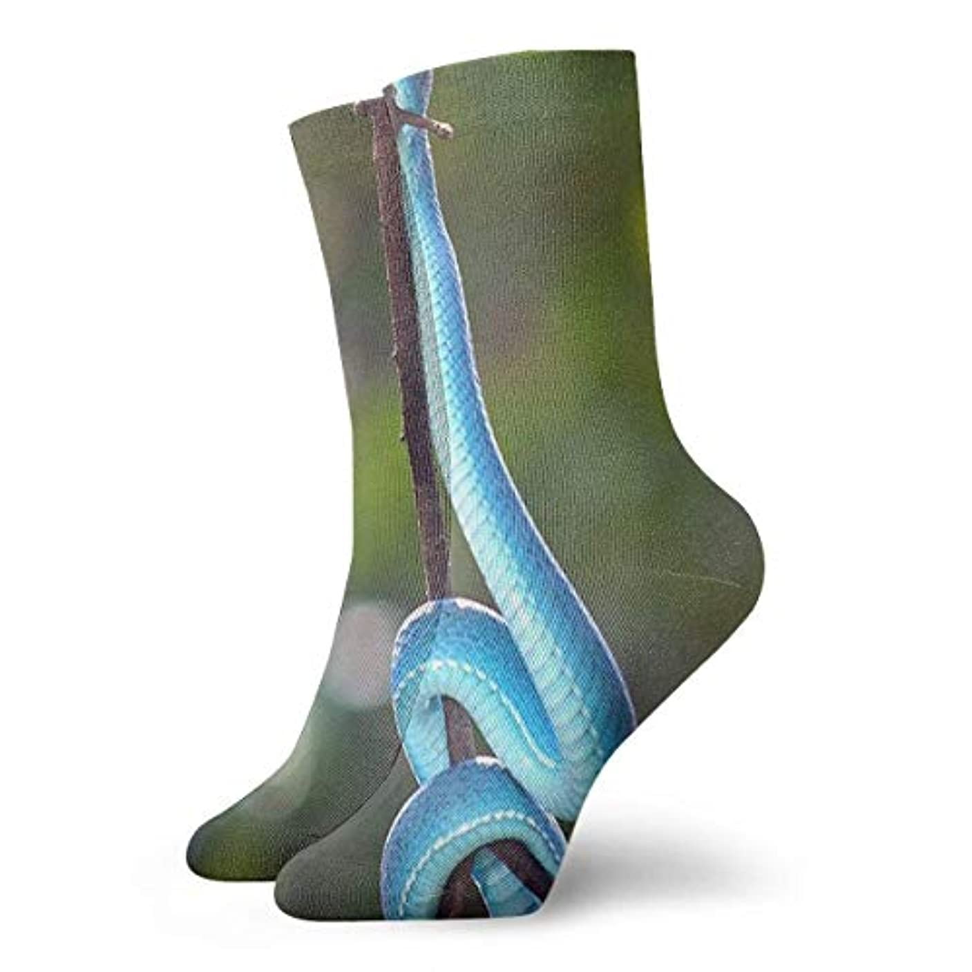 安西剥離気質スカイラインクリスマス靴下ストックフォト- 8205811ブルーソックス