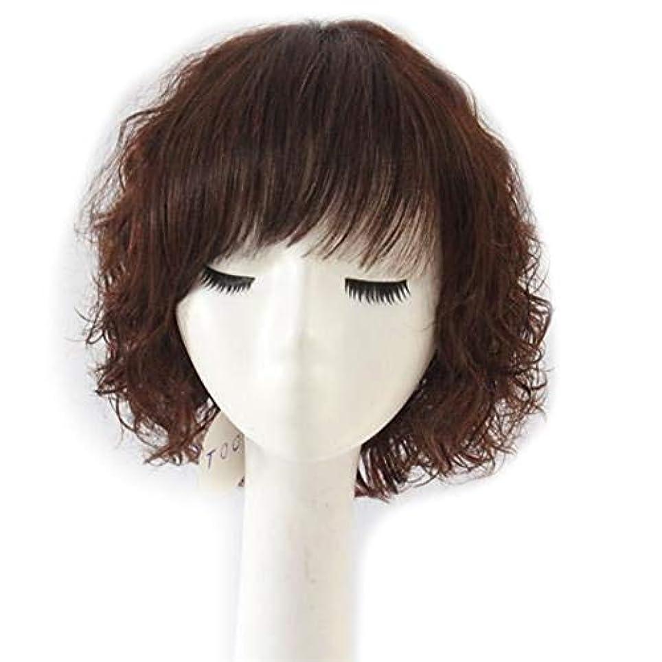 政策摂氏無秩序YOUQIU 母のギフトかつらのために女性のふわふわショートカーリーヘアのフル実ヘアウィッグファッションウィッグナチュラル (色 : Dark brown)