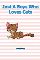 Just A Boys Who Loves Cats: Notebook 6 x 9 inch With 120 Lined pages