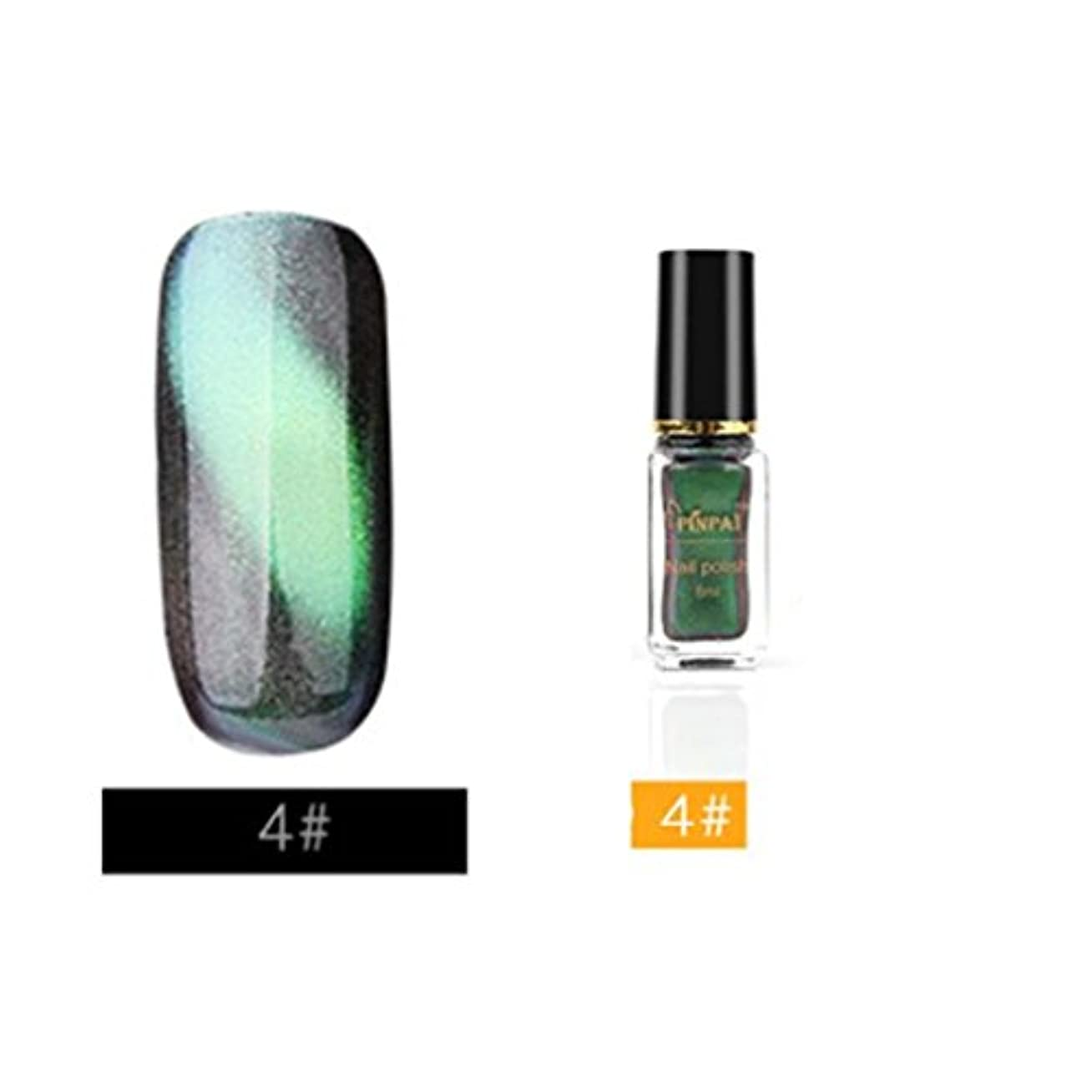 信頼できるモトリー四分円カラー ネイルカラー BOBOGOJP 人気 流行 キャッツアイマニキュア 塗りやすい キラキラ マニュキア ネイルポリッシュ 3D Cat Eye Nail Polish ネイルケアツール 指先 爪先 (D)