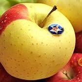 岩手県産 りんご 金星 サン ふじ セット 約2kg 5~6玉入 生産者限定