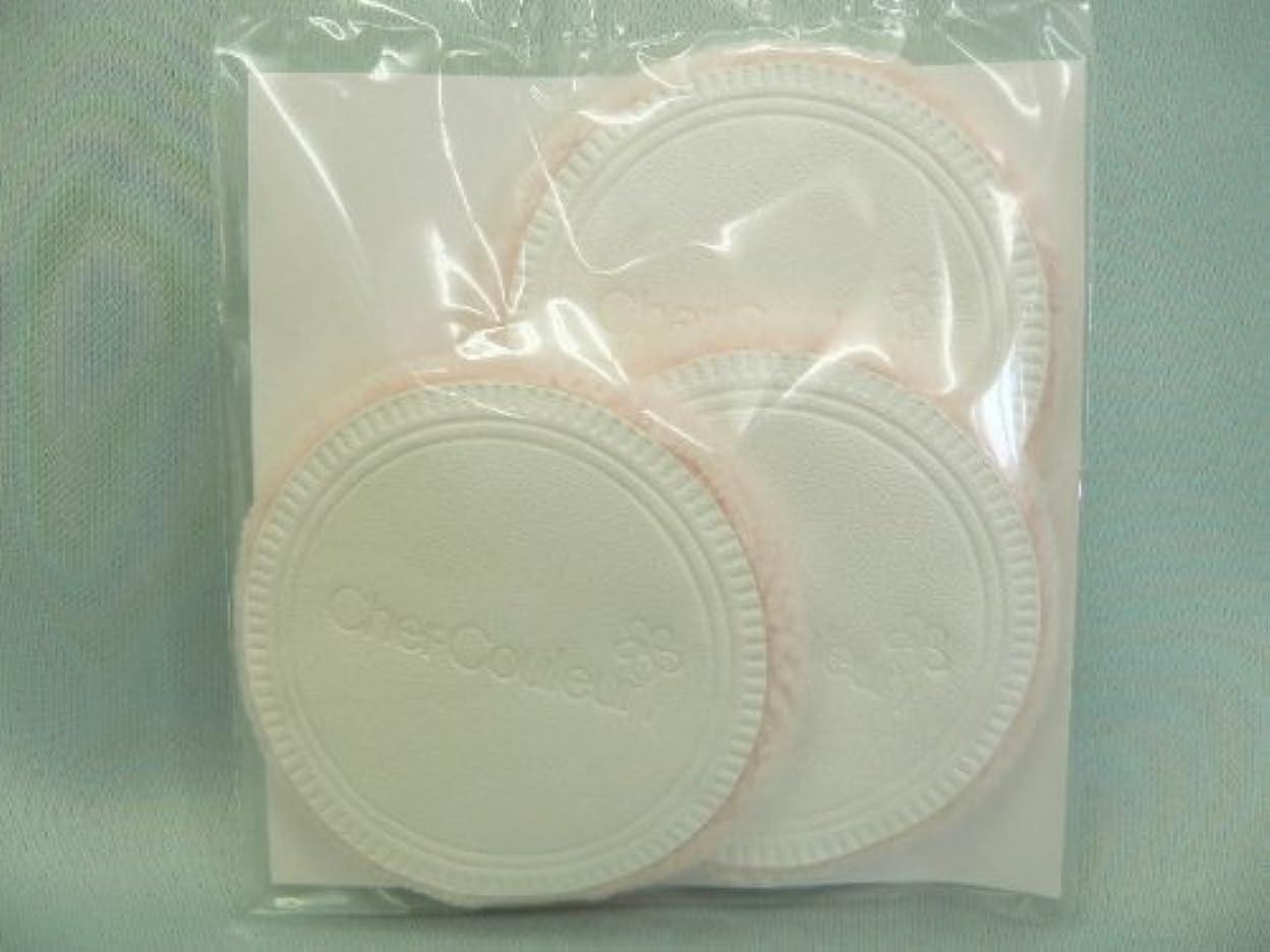 不運耐久見えないシェルクルール化粧品プロテクトパウダー専用ケース(パフ付き)
