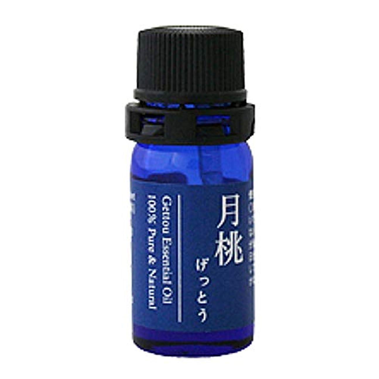 殺すトランクインシュレータ月桃 エッセンシャルオイル (シマ) 2.5ml