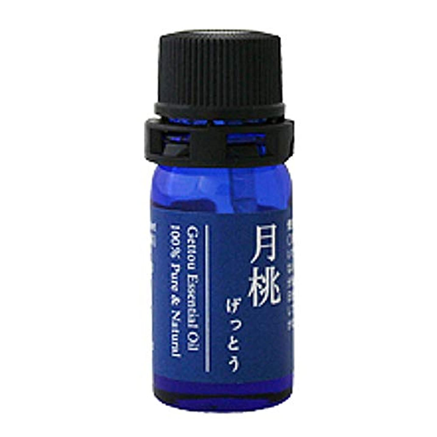 効率的に音声スチール月桃 エッセンシャルオイル (シマ) 2.5ml