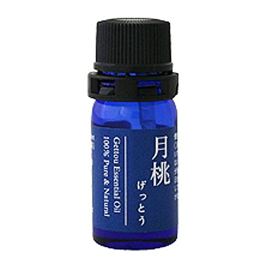 偽善者アセイサカ月桃 エッセンシャルオイル (シマ) 2.5ml
