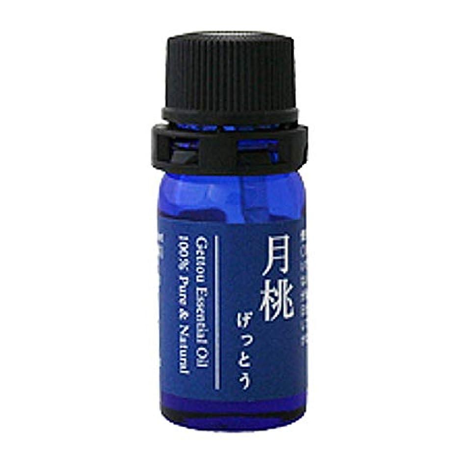 オンスベット繁栄月桃 エッセンシャルオイル (シマ) 2.5ml
