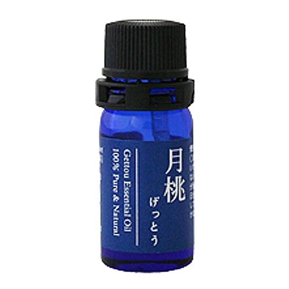 命令名前ブラジャー月桃 エッセンシャルオイル (シマ) 2.5ml