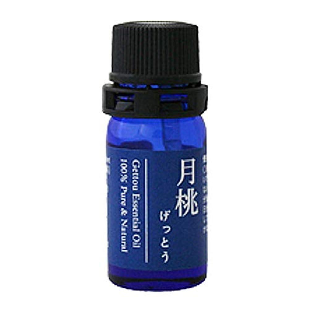 評議会接ぎ木結晶月桃 エッセンシャルオイル (シマ) 2.5ml