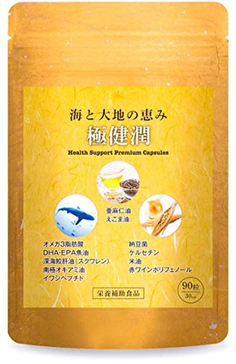 ペイント残り極めて重要な極健潤 オメガ3 DHA EPA サプリメント 深海鮫肝油 納豆菌 ケルセチン 亜麻仁油 えごま油 30日分