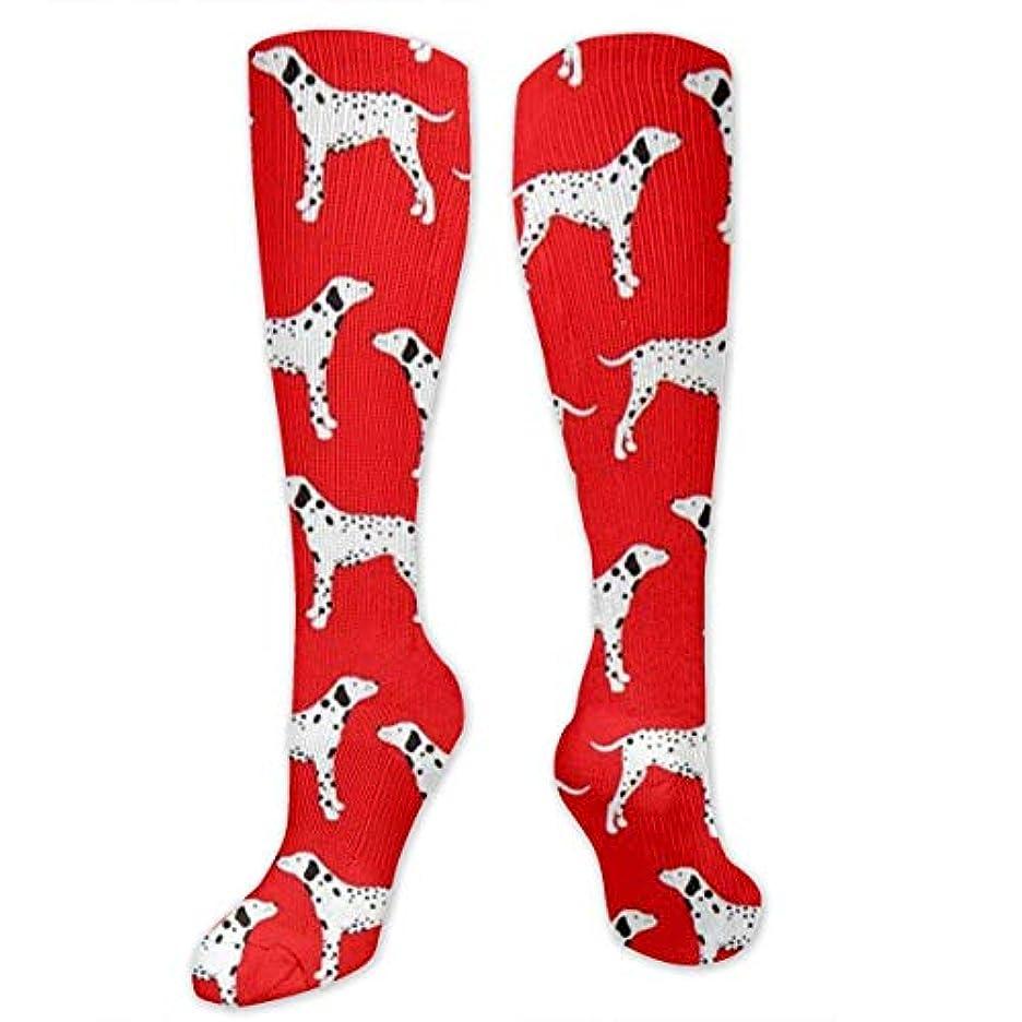艶理容師一時停止靴下,ストッキング,野生のジョーカー,実際,秋の本質,冬必須,サマーウェア&RBXAA Spotted Dog is On A Red Background Socks Women's Winter Cotton Long...