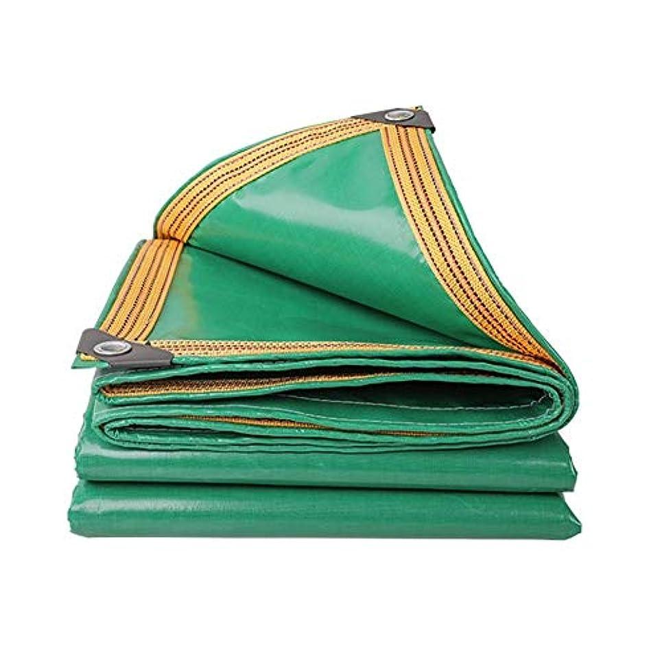 運動する赤外線少数19-yiruculture 屋外テント超軽量オックスフォード雨防水シートピクニックマットトラック防水シート貨物日焼け止め絶縁耐摩耗 (Color : 緑, サイズ : 3X5M)