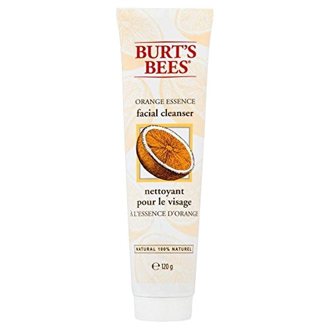 販売員共同選択過度の[Burt's Bees] バーツビーオレンジエッセンス洗顔料(120グラム) - Burt's Bees Orange Essence Facial Cleanser (120g) [並行輸入品]