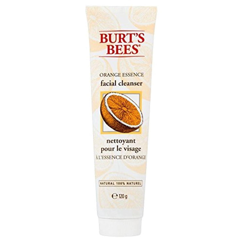 頼む定説胆嚢[Burt's Bees] バーツビーオレンジエッセンス洗顔料(120グラム) - Burt's Bees Orange Essence Facial Cleanser (120g) [並行輸入品]
