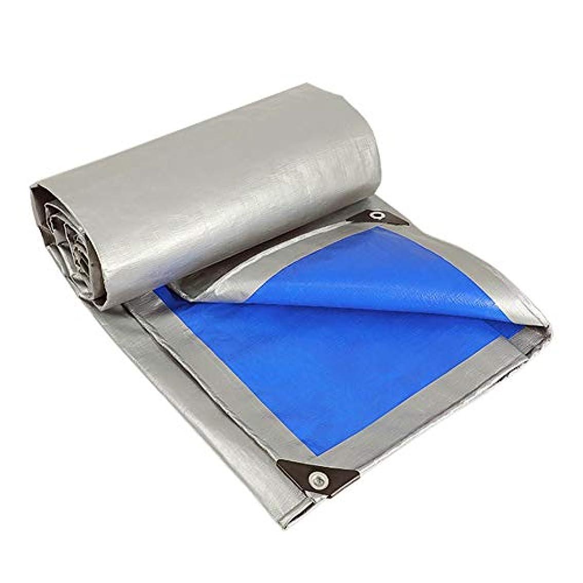 哲学者スピン眩惑するALGWXQ 厚くする 屋外の 雨を覆う プラスチック防水シート 防雨布 防水日焼け止め 防水シート キャノピー トラック (色 : Blue+Gray, サイズ さいず : 6x12m)