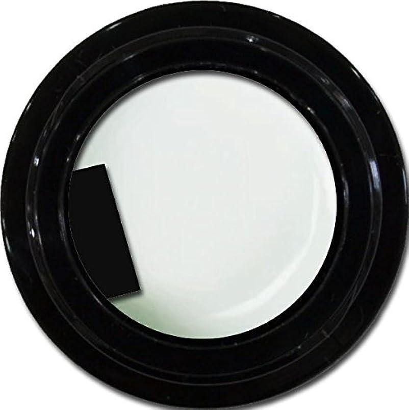 間隔プレフィックスソフトウェアカラージェル enchant gel color gel S001 sheer White 3g/ エンチャントジェル カラージェル S001シアーホワイト 3グラム