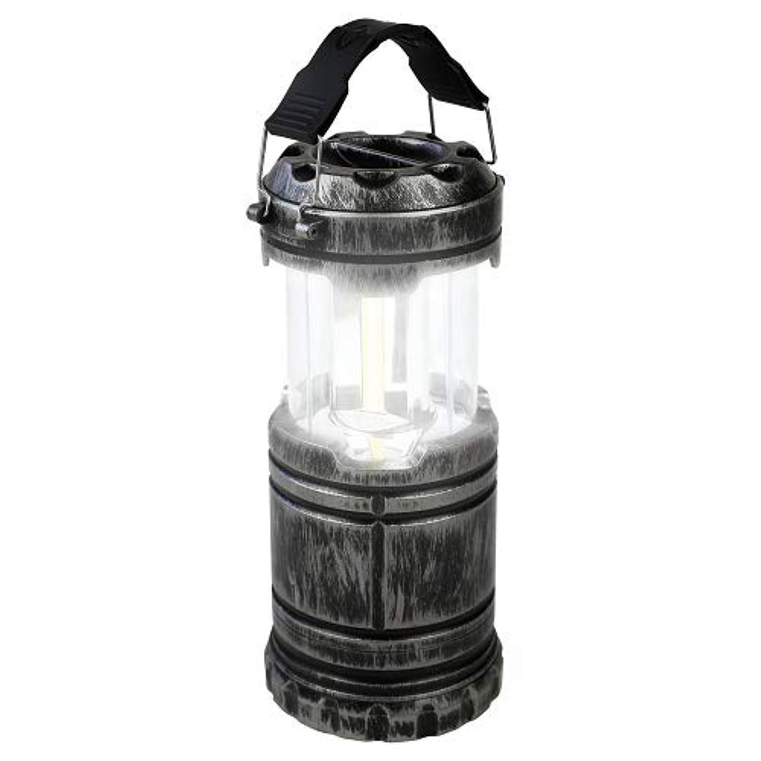 承認する伝染性勢い懐中電灯にもなるLEDランタン アンティークシルバー