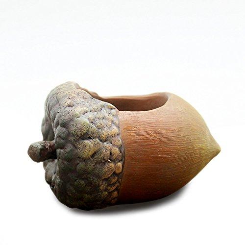[해외]식물 화분 식물 화분 세련된 다육 식물 화분 화분 홈 정원 장식/Plant flowerpot Plant pot Fashionable succulent pot pot Potted home garden Ornaments