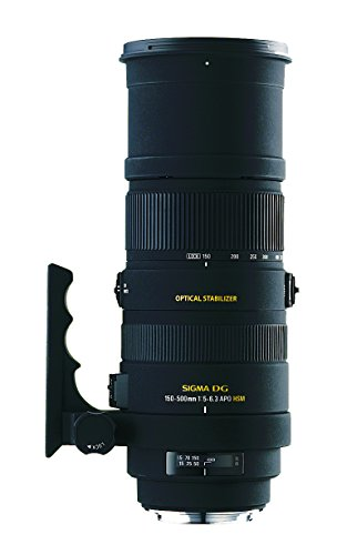 SIGMA 超望遠ズームレンズ APO 150-500mm F5-6.3 DG OS HSM ニコン用 フルサイズ対応 737559