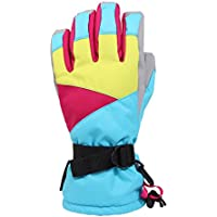 グローブ インナー付 手袋 てぶくろ L-size(男性向)/S-size(女性向) スノーボード スキー バイク 防寒