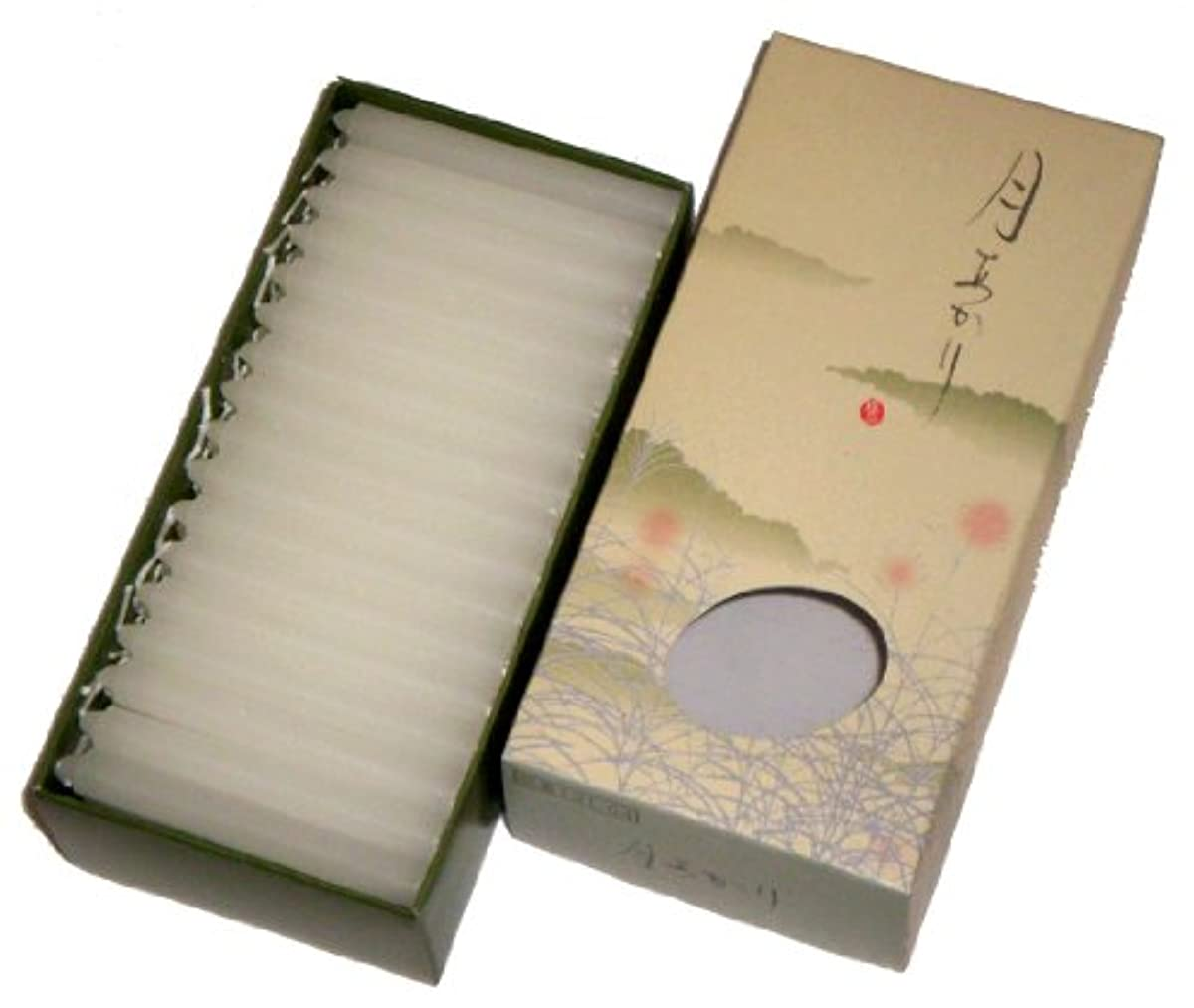 ジャーナル地理困難東海製蝋 ローソク 極品 月あかり 30分 約96本 131-04