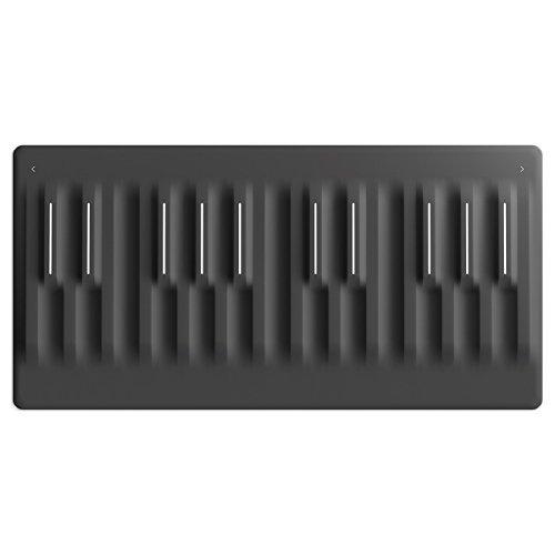 ROLI Seaboard Block Controller [並行輸入品]...