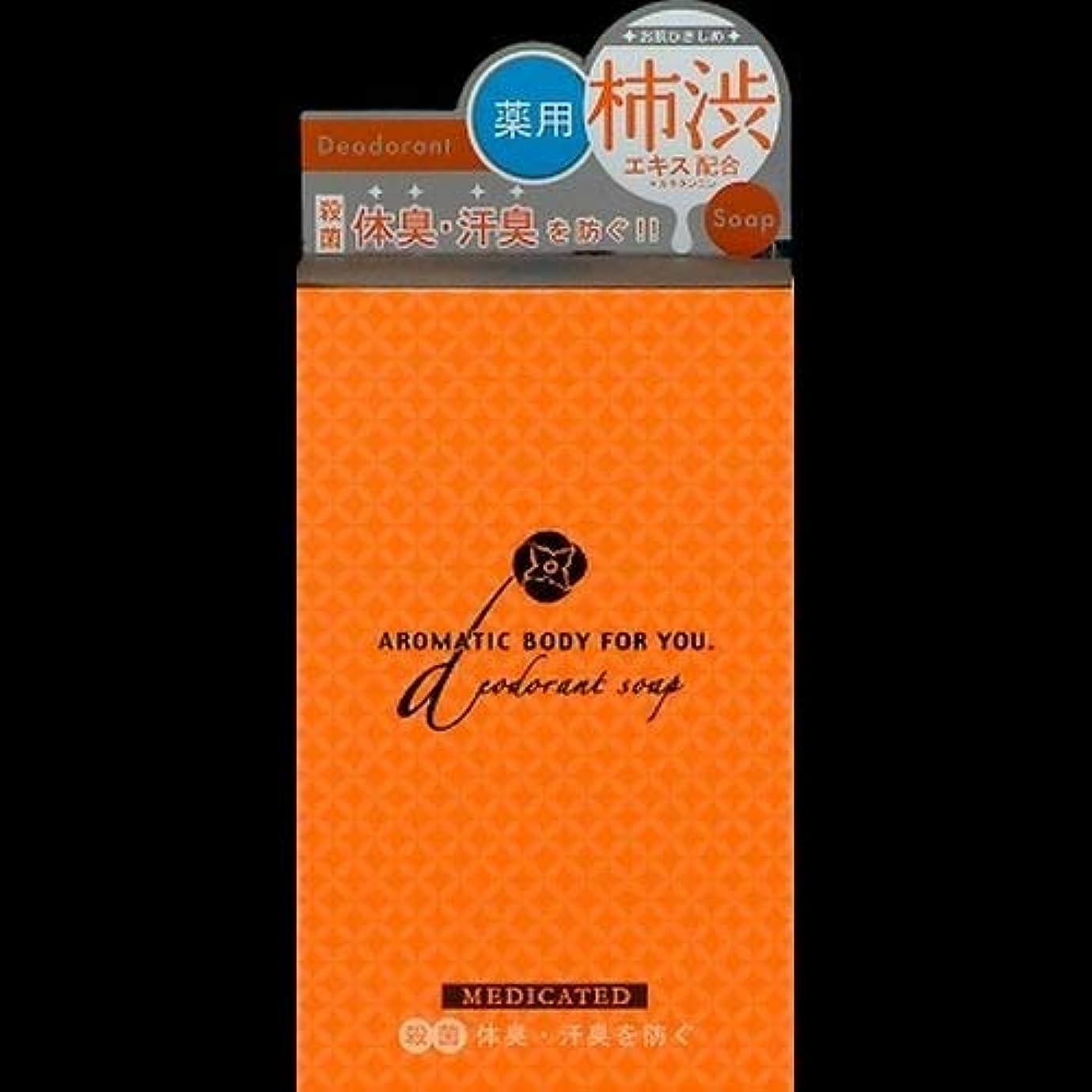 氷正しくサージペリカン 柿渋エキス配合 アロマティックBソープ 100g ×2セット