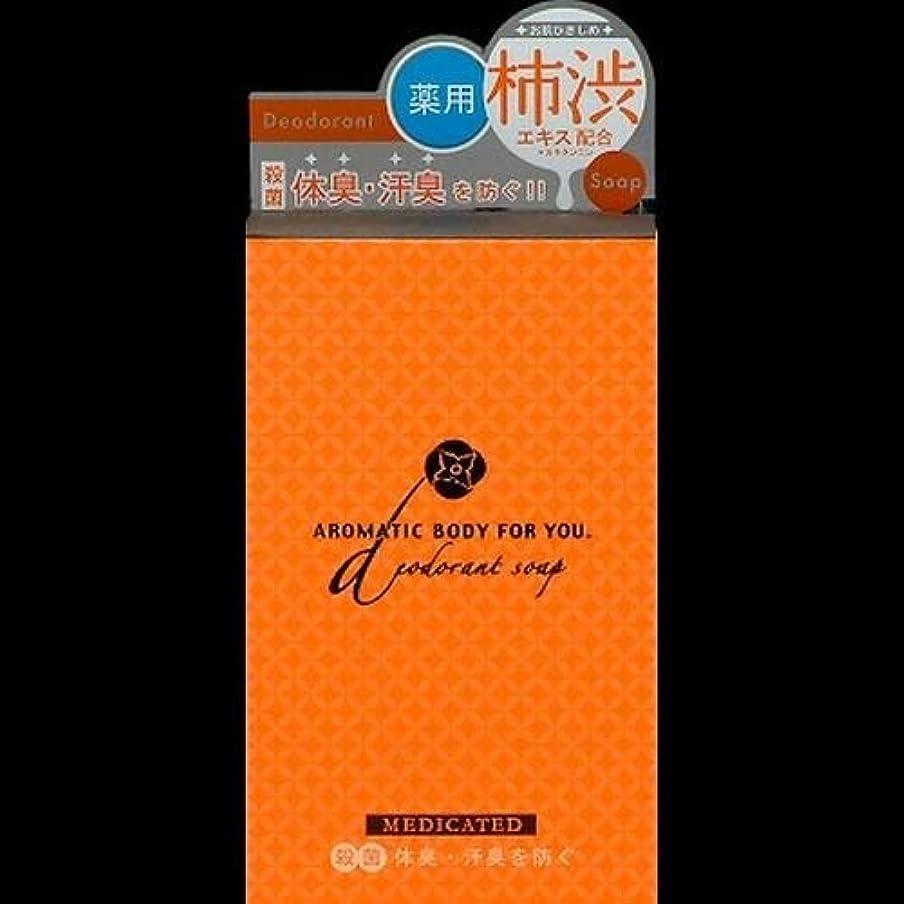 マスクルート先のことを考えるペリカン 柿渋エキス配合 アロマティックBソープ 100g ×2セット