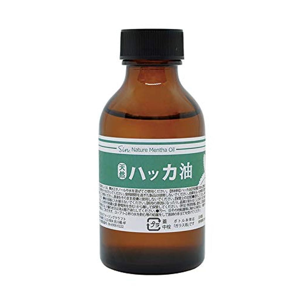 バター静めるアプライアンス日本製 天然ハッカ油(ハッカオイル) 100ml 中栓?スポイト付き