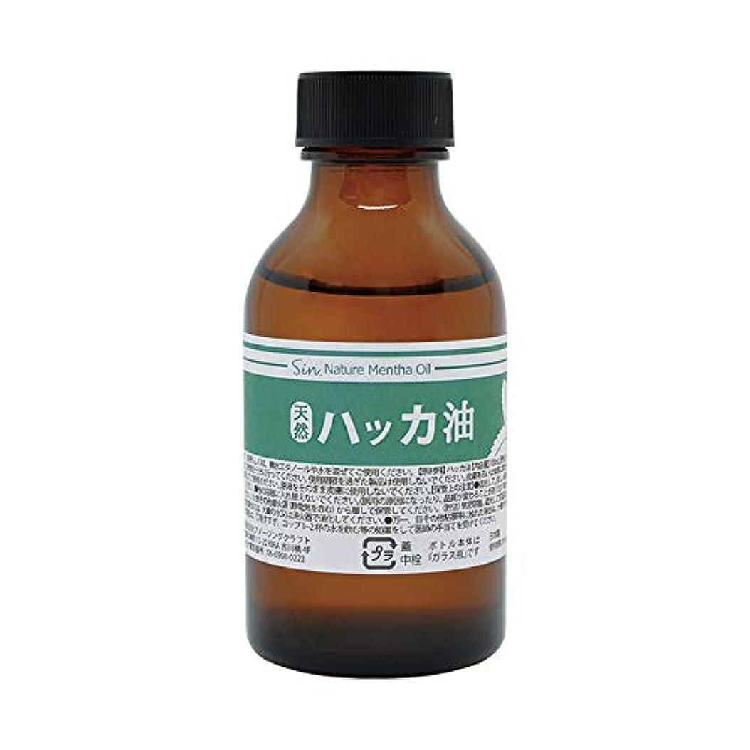 松明育成投げ捨てる日本製 天然ハッカ油(ハッカオイル) 100ml 中栓?スポイト付き