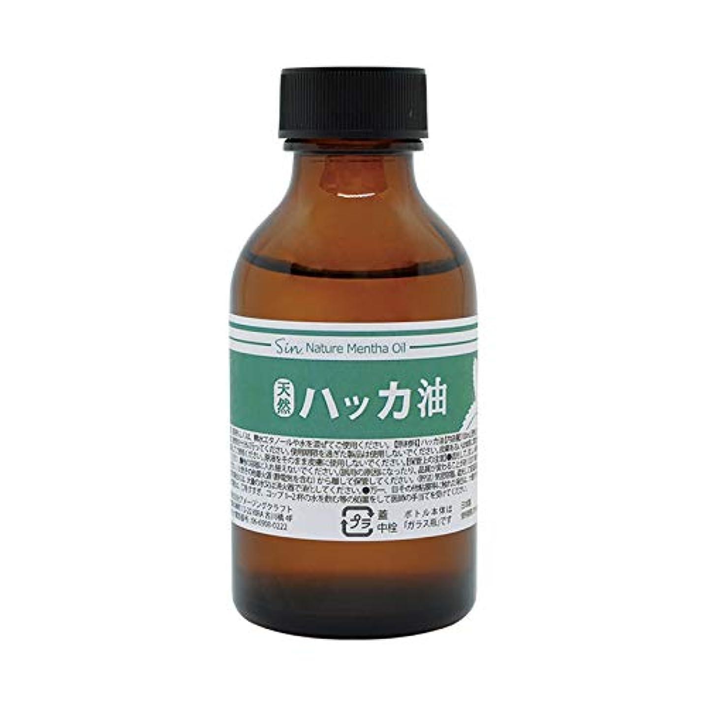海外海外大臣日本製 天然ハッカ油(ハッカオイル) 100ml 中栓?スポイト付き