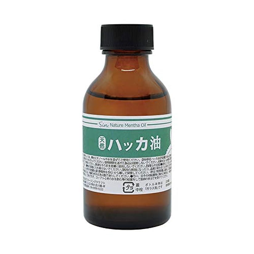 エントリ撤退忌まわしい日本製 天然ハッカ油(ハッカオイル) 100ml 中栓?スポイト付き