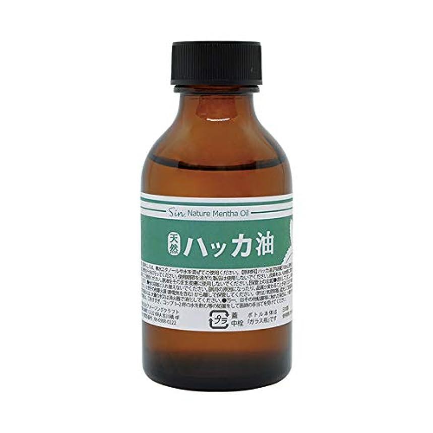 楽観的罪瀬戸際日本製 天然ハッカ油(ハッカオイル) 100ml 中栓?スポイト付き