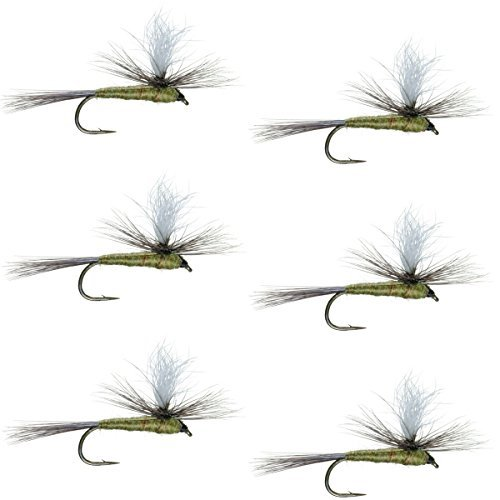 The Fly Fishing PlaceパラシュートブルーWingedオリーブBWOクラシックTrout Dry Fly Fishing Flies–セットof 6Fliesサイズ18