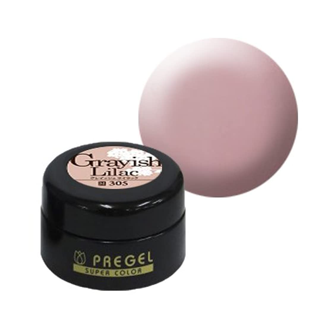 レンドピカソ代表して【PREGEL】カラーEx グレイッシュライラック / PG-CE305 【UV&LED】プリジェル カラージェル ジェルネイル用品