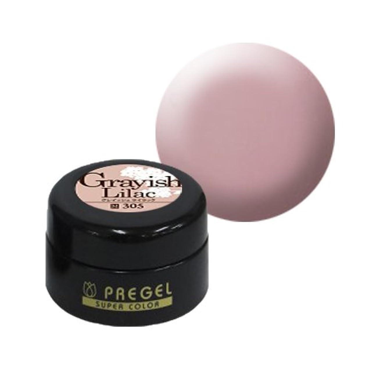 それによって移動ピクニックをする【PREGEL】カラーEx グレイッシュライラック / PG-CE305 【UV&LED】プリジェル カラージェル ジェルネイル用品