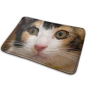 おまえは何を言っているんだ(猫)かわいい猫朝の色ドアマットホームドアマットキッチンバスルーム吸収パッドバスルーム滑り止めドアマット寝室ドアカーペット肥厚40 * 60