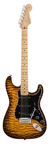 Fender USA / Exotic Wood Collection American Pro Mahogany Stratocaster Violin Burst 2017 Limited Edition