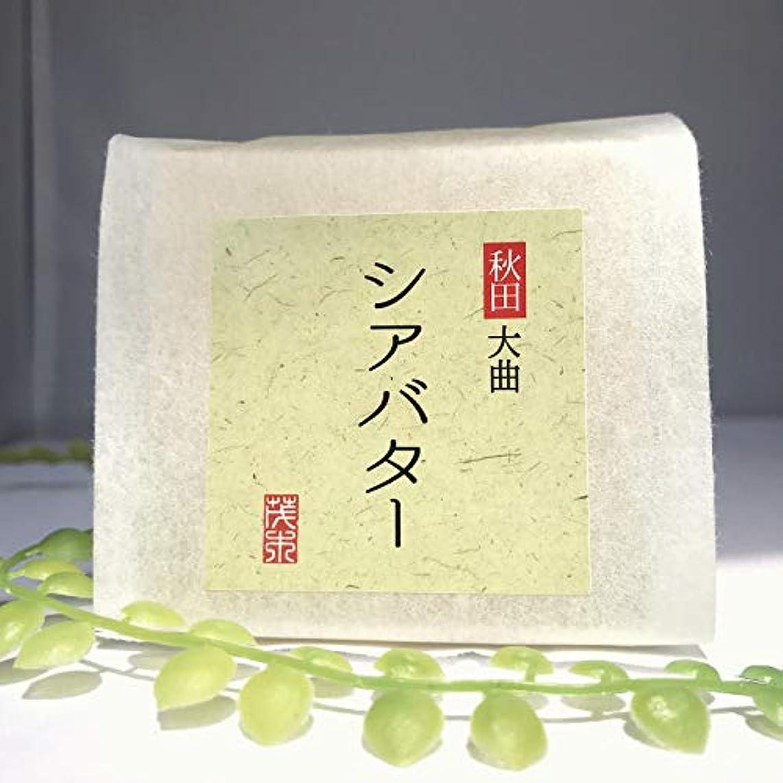 月面タンパク質否定する無添加石鹸 シアバター石鹸 100g