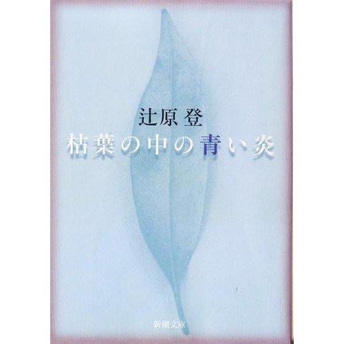 枯葉の中の青い炎 / 辻原 登