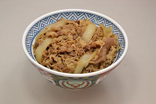 吉野家 大盛 冷凍牛丼の具 10食セット