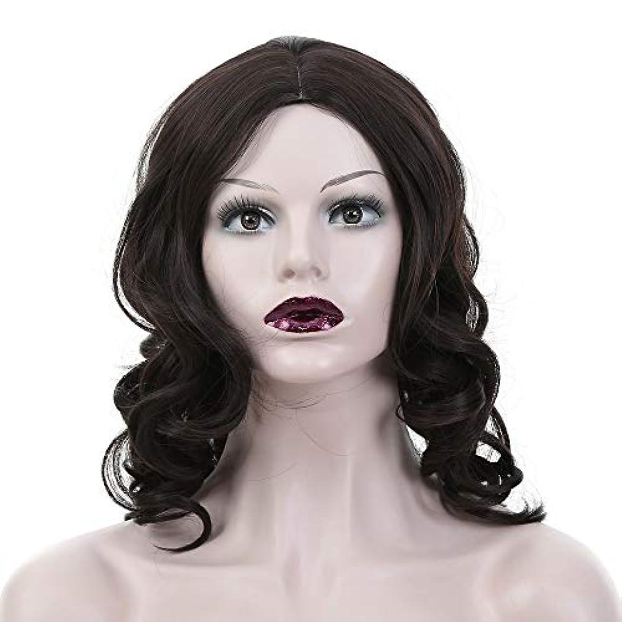 多様なから聞く集計WASAIO 女性の黒の長い巻き毛のかつら (色 : 黒)