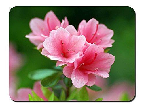 ピンクのツツジの花 パターンカスタムの マウスパッド 植物・花 (26cmx21cm)